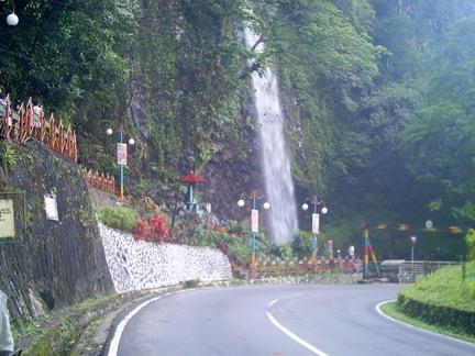 Lingkungan lembah anai sangat mengagumkan. hutan tropis yang lebat